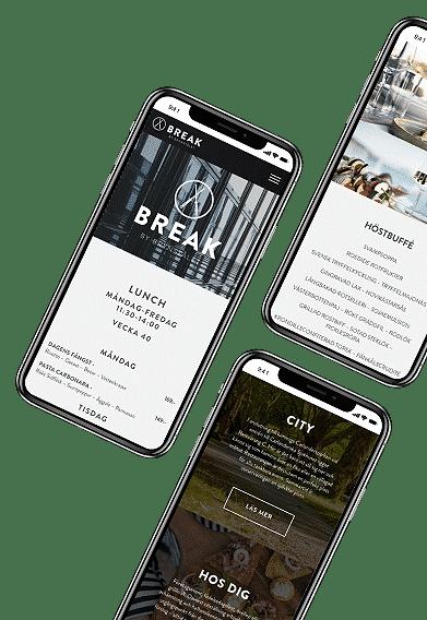 Webbprojekt Brynstålet